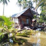 Akibat Cuaca Buruk, Rumah Warga Miskin di Polewali Hancur Tertimpa Pohon