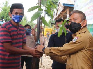 Prihatin Petani di Tengah Pandemi, Gubernur Sulbar Bantu Bibit Kopi dan Kakao