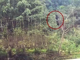 Viral Pelajar Bertaruh Nyawa, Bergantung di Jembatan Rusak untuk Sebrangi Sungai di Mamasa