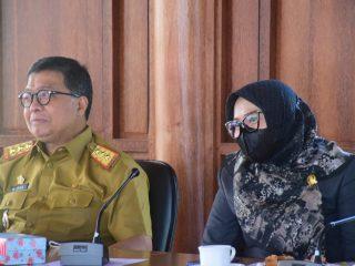 Rapat Banggar, Suraida Senang Duduk Bersama Bicarakan Perencanaan Pembangunan