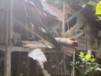 Tertimpa Pohon Tumbang, Rumah Warga di Campalagian Rusak Parah
